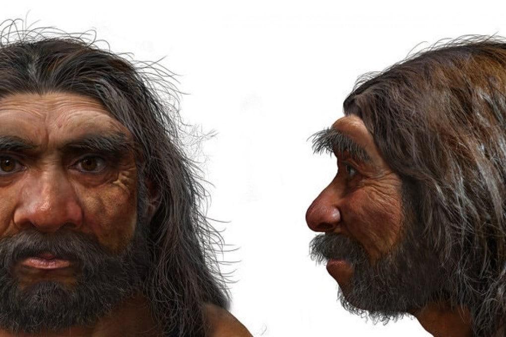 Naso ampio e schiacciato, sopracciglia prominenti e, per il resto, un volto simile al nostro: una ricostruzione dell'aspetto dell'