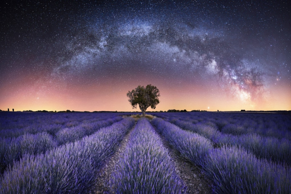 Astronomy Photographer of the Year 2021: le foto finaliste