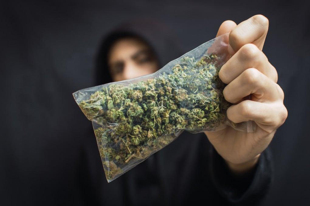 La cannabis è la droga più consumata dai giovani: i danni che può provocare al cervello in via di sviluppo sono scientificamente provati.