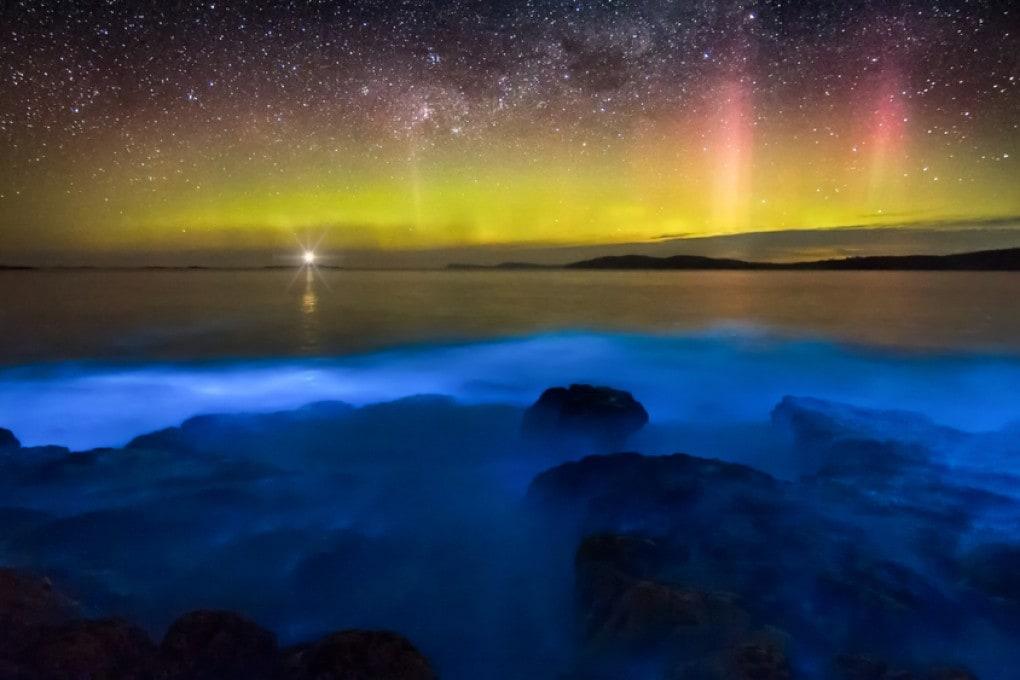 Bioluminescenza oceanica