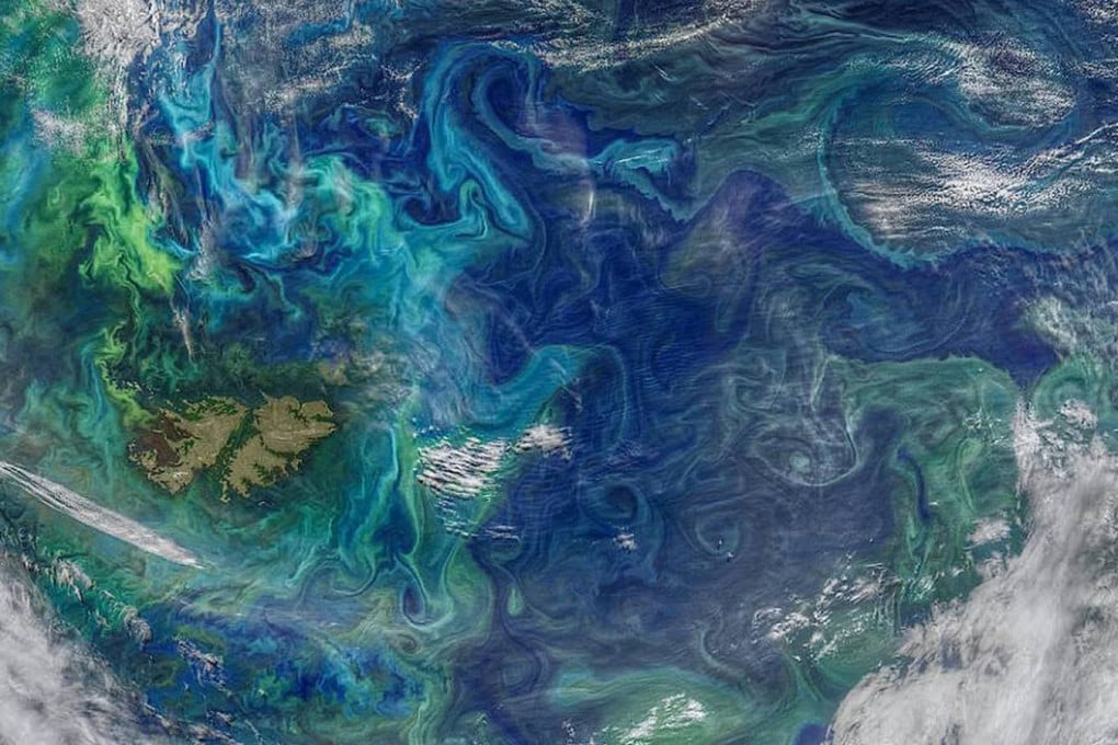 I vortici sono correnti circolari (in verde e in azzurro chiaro quelli carichi di fioriture di fitoplancton) che giocano un ruolo importante nel determinare le grandi correnti oceaniche, i flussi di calore, le concentrazioni saline e la risalita di nutrienti e organismi dalle profondità. L'interazione con i venti può dare luogo a fenomeni caotici.