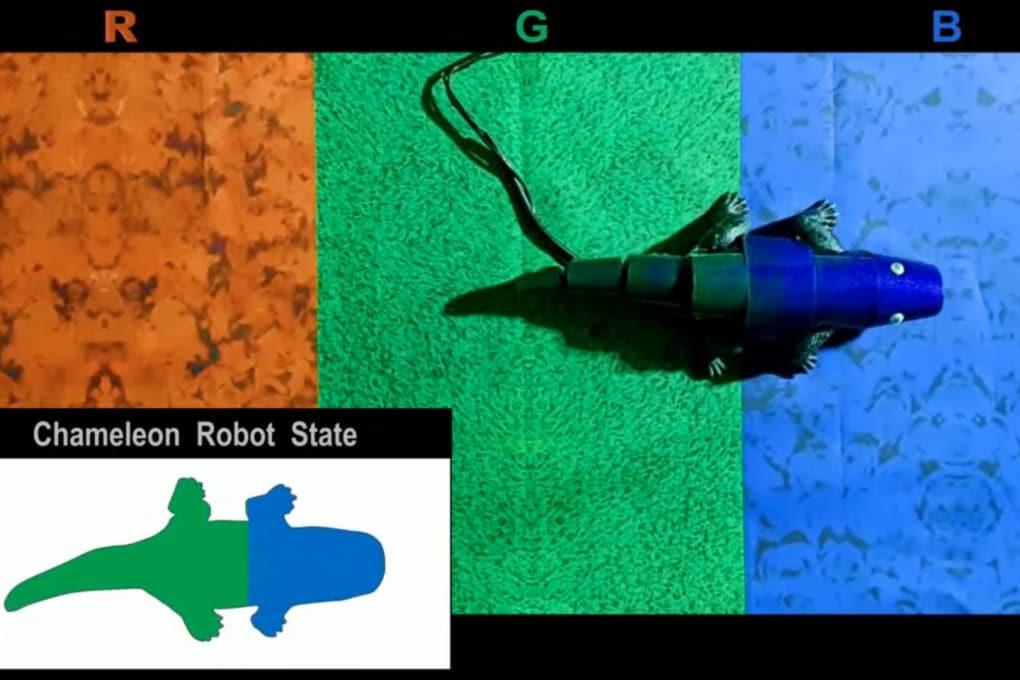 La pelle del camaleonte robot cambia colore quasi in tempo reale.