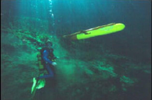 La riscossa dei pesci robot