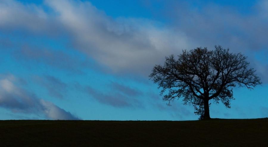 La selezione di ifocus paesaggi for Disegni paesaggi semplici