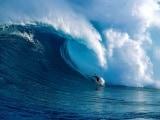 big_wave_web