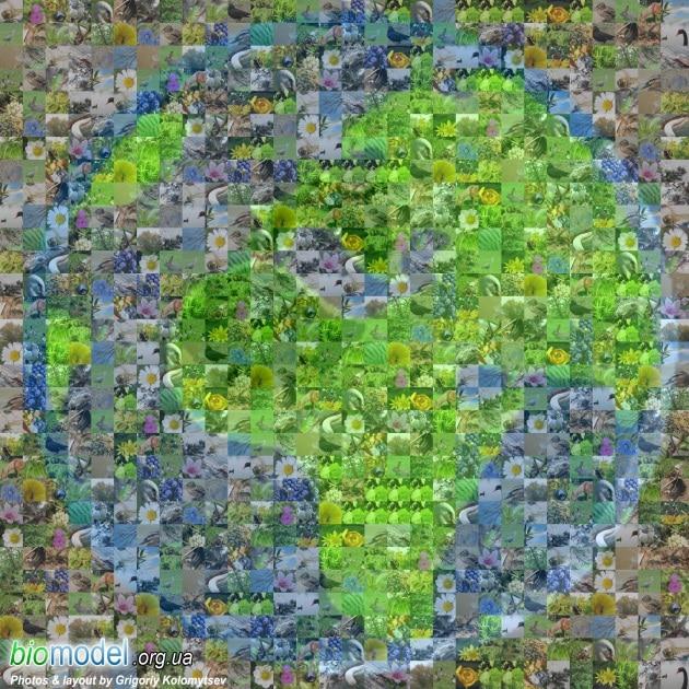 biodiversity_earth_big