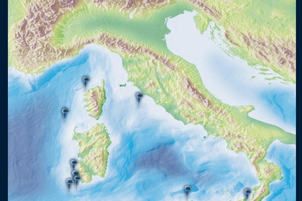 Prima vittima di medusa nel Mediterraneo