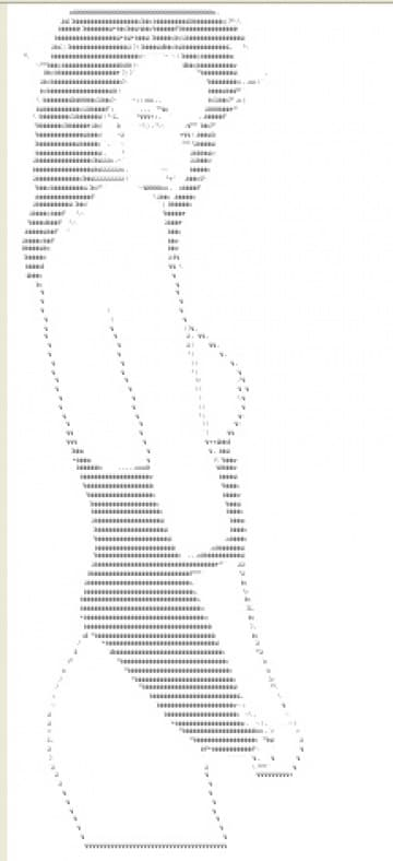 ASCII porn: il porno online a punti e virgole