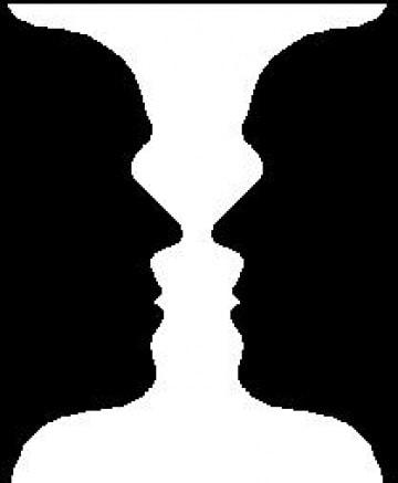 """Illusioni ottiche e previsioni """"cerebrali"""""""