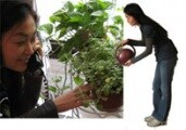 botanicalls-joo