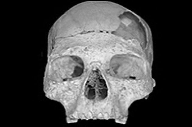 L'Uomo di Neanderthal è nostro parente?