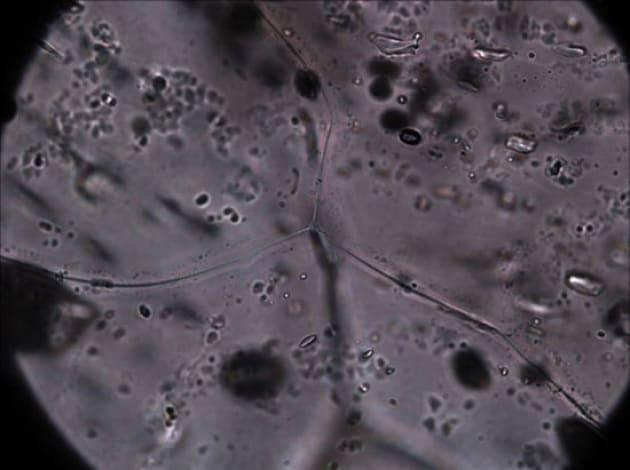 I batteri tra le nuvole
