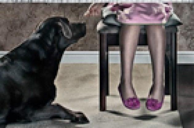 Sai cosa mangia il tuo cane?