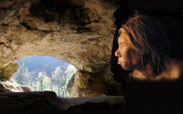 Siamo tutti un po' neanderthaliani