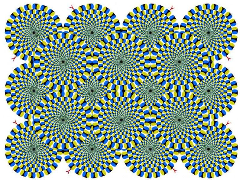 Eppur si muove: illusioni ottiche in movimento