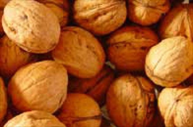 800px-walnuts