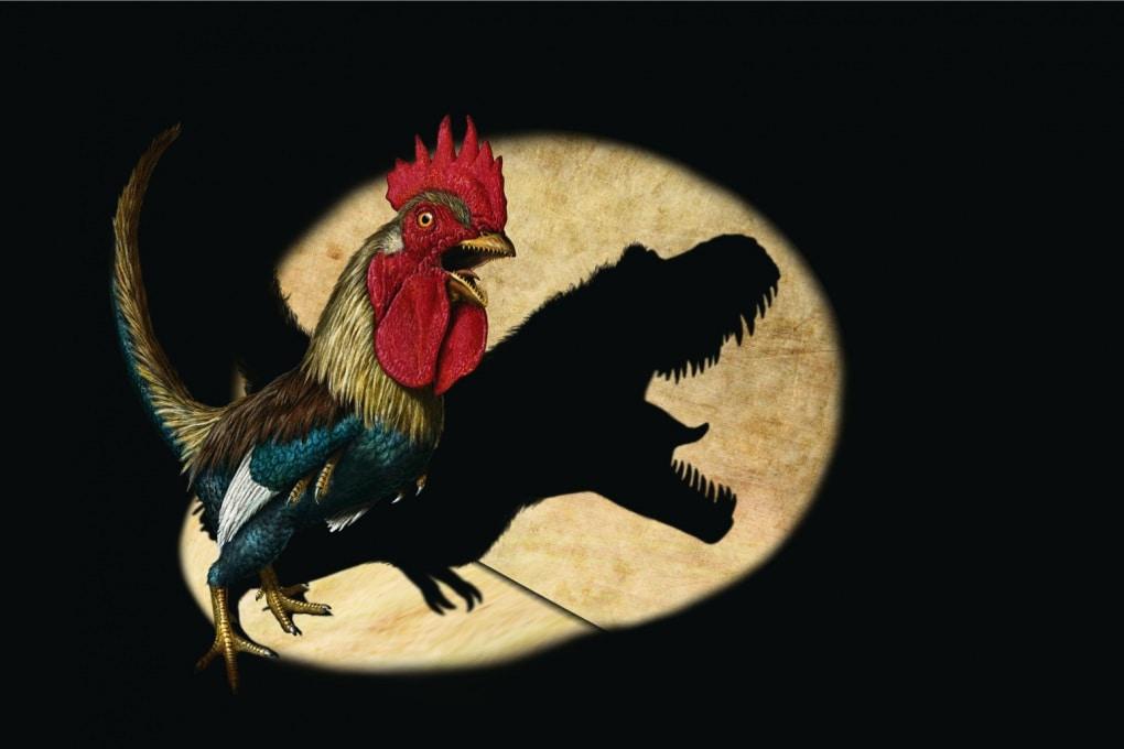 Creerò il pollosauro