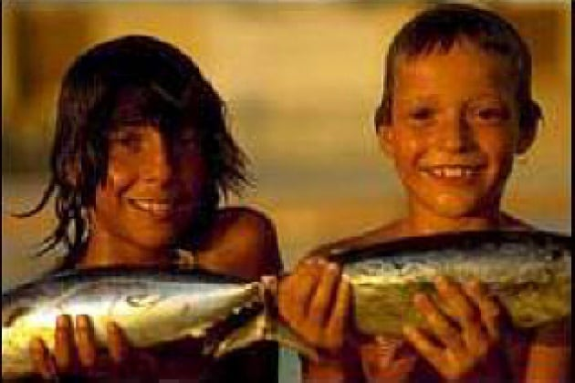 Perché il pesce va a male prima della carne?