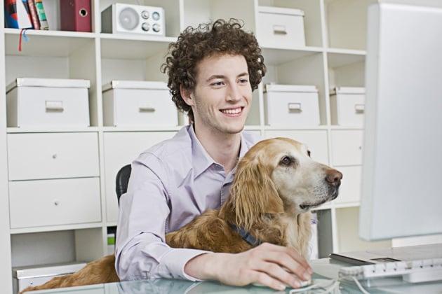 A che cosa sta pensando il tuo cane? Te lo dice l'fMRI