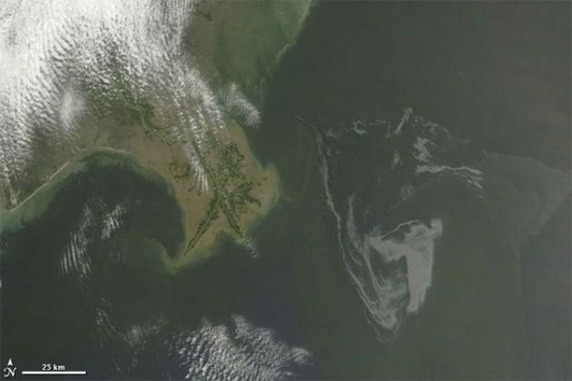Golfo del Messico: i numeri della catastrofe