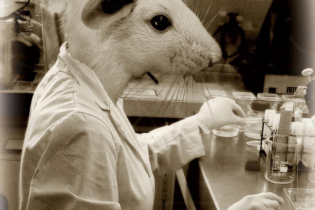 Scienziati pazzi per amore (della scienza)