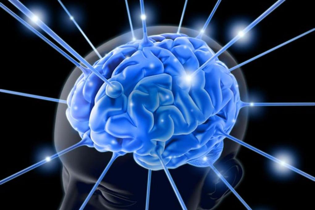 Neurobiologia: i suoni del gusto