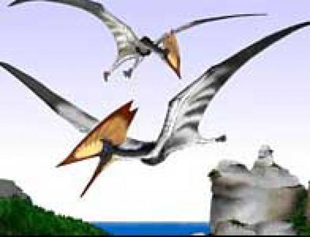 Il sexy copricapo del pterosauro
