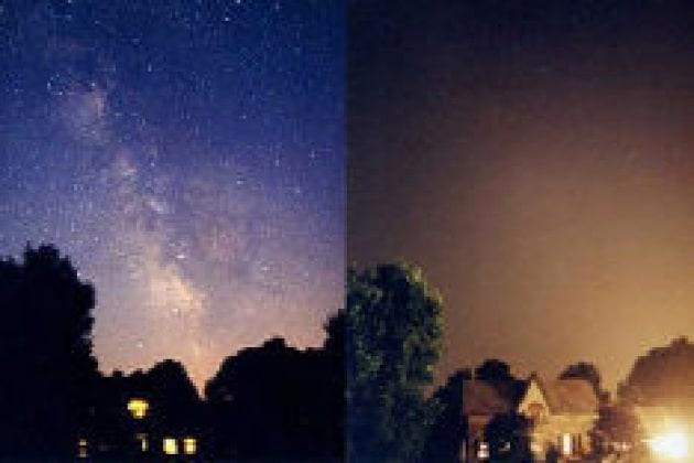 L'inquinamento luminoso e gli effetti sugli animali