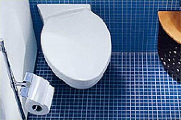 Chi ha paura dei bagni pubblici? - Focus.it