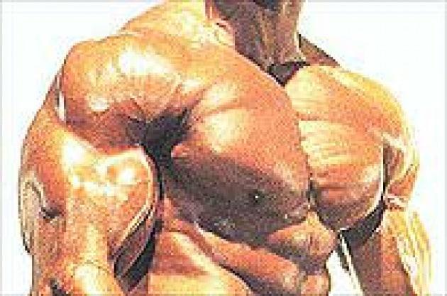 Troppi muscoli fanno male al cervello