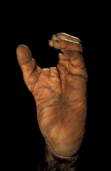 Incontri unghie fatte a mano