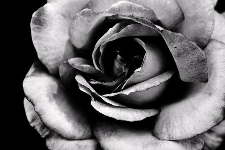 Risultati immagini per fotografie belle bianco e nero