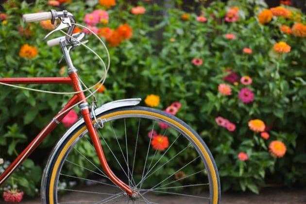 Come fa la bici a restare in piedi?