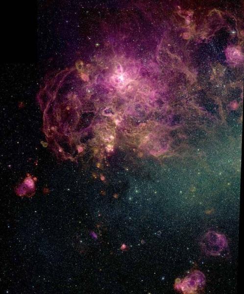 nebulosa-con-le-zampe