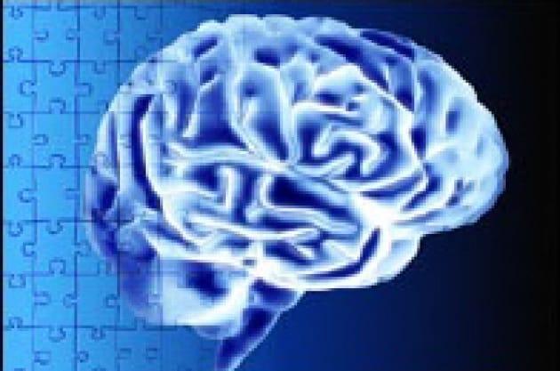 Pochi neuroni per ricordare