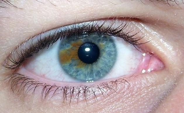 Top Gli occhi azzurri ispirano meno fiducia di quelli castani - Focus.it BY16