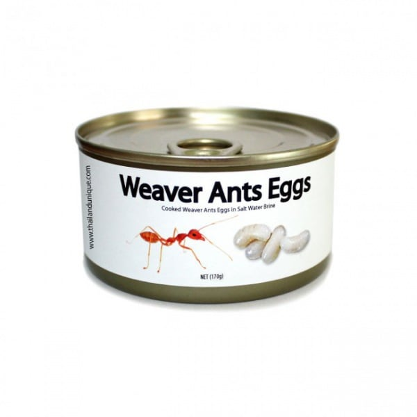 canned-weaver-ants-eggs-650x650