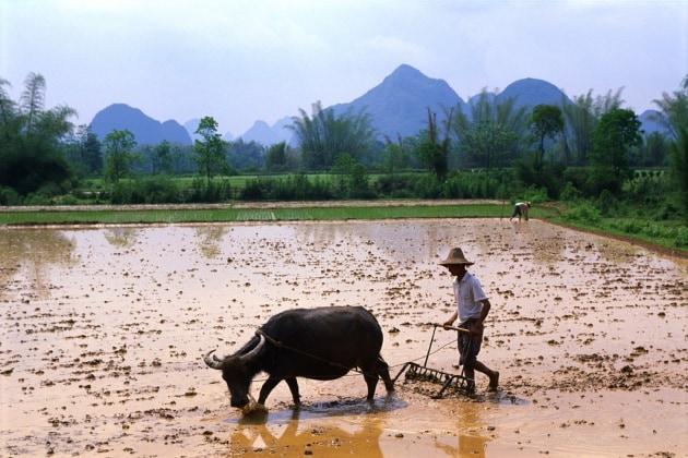 La Terra ha sete, nel 2050 servirà il doppio dell'acqua
