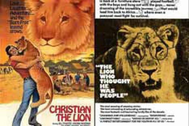 Il leone riconoscente