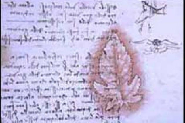 Perch leonardo da vinci scriveva specularmente - Scrittura a specchio ...