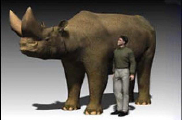 Trovati gli antenati dei moderni elefanti