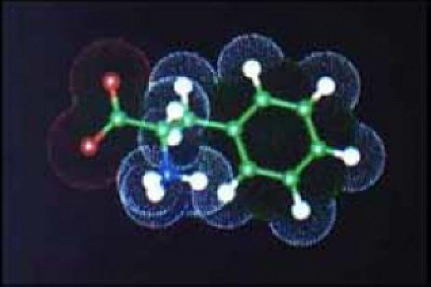 Che cosa sono gli amminoacidi?