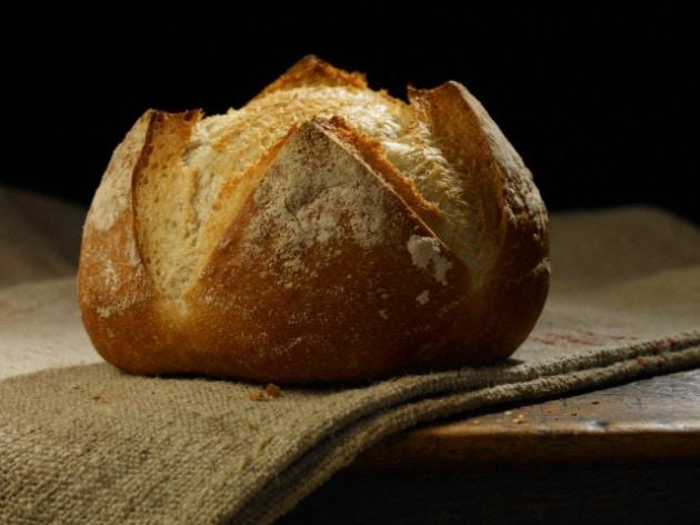 Da dove proviene il lievito usato per fare il pane?