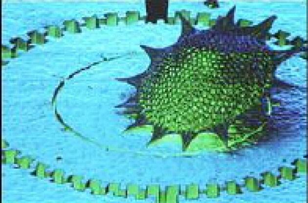 Microbatterie per nanostrumenti