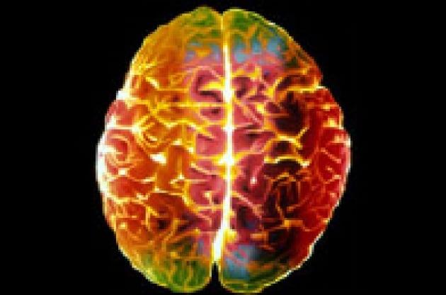 Cervello e linguaggio