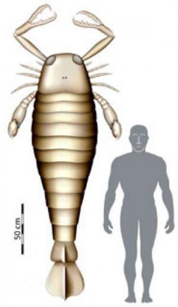 L'età degli scorpioni giganti