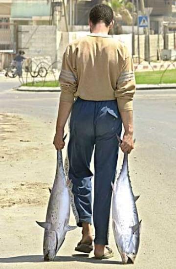 I pesci preferiscono i piedi che puzzano