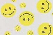 smile68-1