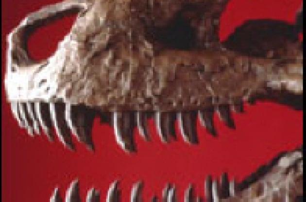 La morte prematura del rex