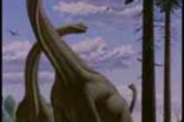 Perché i dinosauri erano così grandi e gli animali poi sono andati riducendosi?